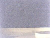 bobinbad-2009-06-17-6830264.jpg