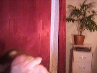 lilyharley-2020-07-09-13921570.jpg